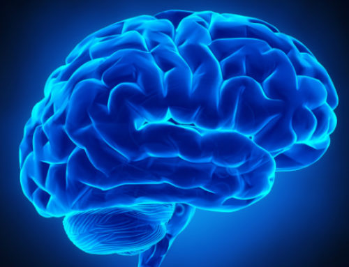 How to Protect Your Brain – The Essential 10